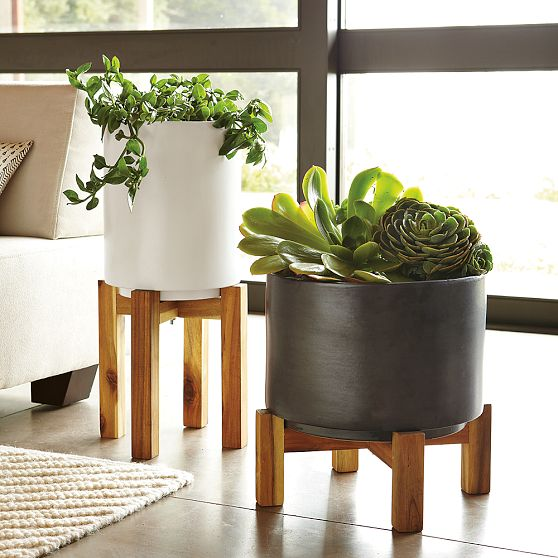 The plant that keeps on giving element of chic Plant stands for indoors