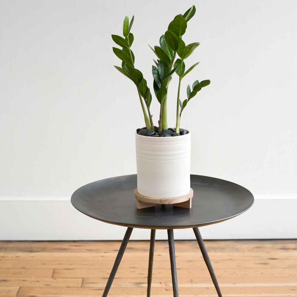 Superieur Great Little Modern Table/plant ...